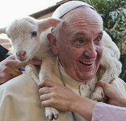 pope-francis-lamb